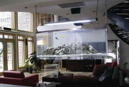 Un acuario para decorar tu hogar