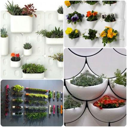 Jard n vertical en casa for Que es un jardin vertical