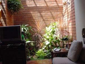 Un Jardín Interior