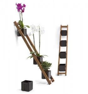 Una escalera con macetas