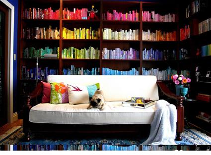 Organiza tus libros por colores
