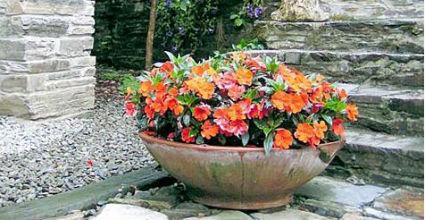 Decorar jardines con macetas